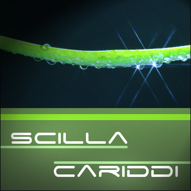 Scilla & Cariddi