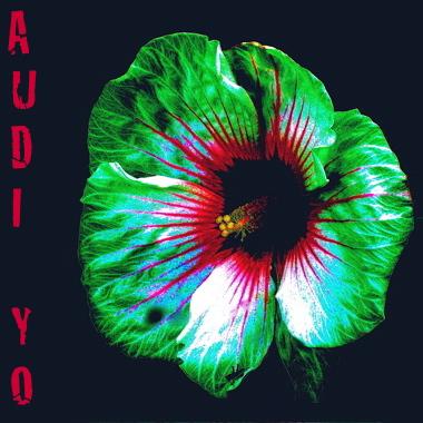 Audi_Yo