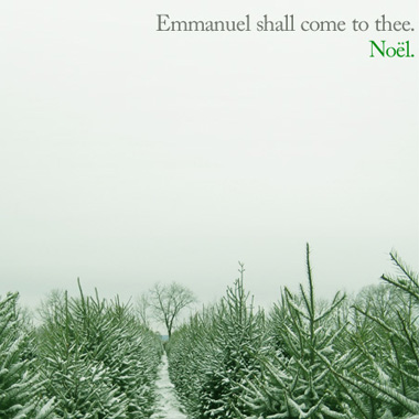 Emmanuel Shall Come to Thee