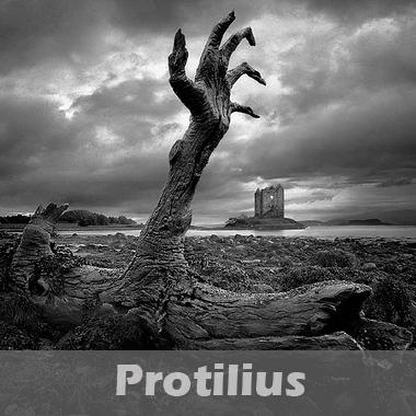 Protilius