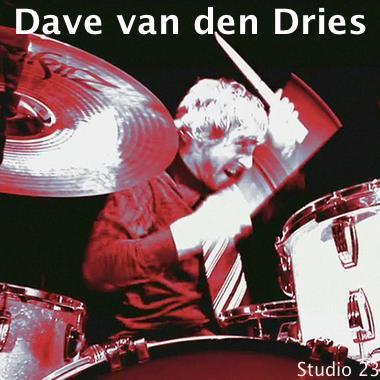Dave van den Dries