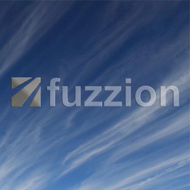 Fuzzion