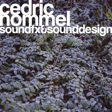Cedric Hommel
