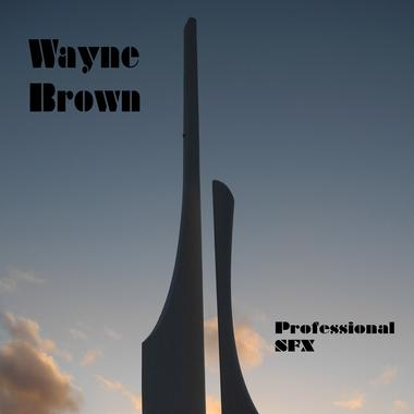 Wayne Brown