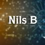 Nils Bergholz (LP)