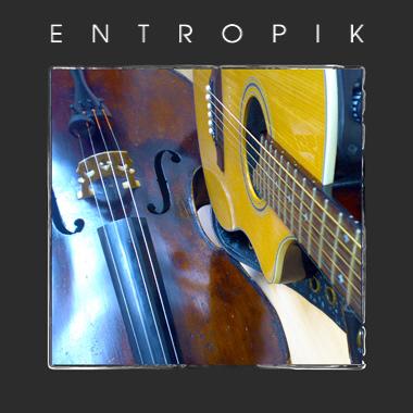 Entropik