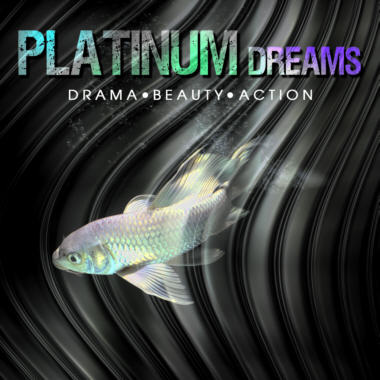 Platinum Dreams