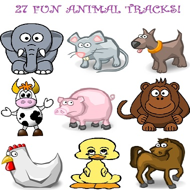 Fun Animal Tracks. 27 Great Tracks!