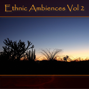 Ethnic Ambiences Vol. 2