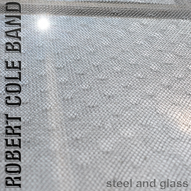 Robert Cole Band -Steel and Glass- 9 Track Album
