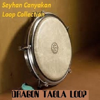 Dragon Tabla Loops