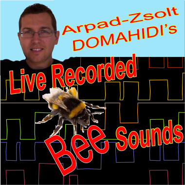 Live Recorded Bee Sounds